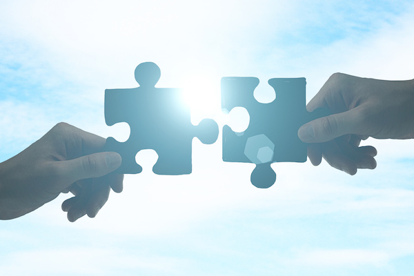 What Exactly is a Merger?